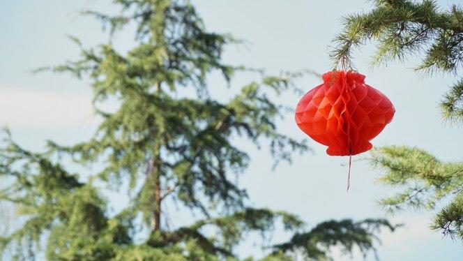 Lámpara roja en el árbol