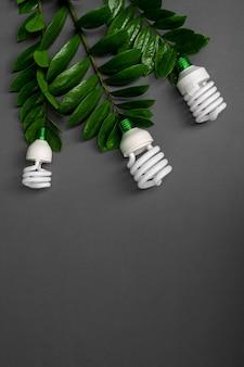 Lámpara de tres led con la hoja verde, concepto de energía eco, de cerca.