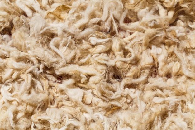 Lana cruda de oveja de hermosas montañas del cáucaso en la región del cáucaso menor