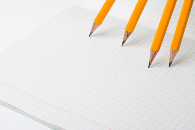 Los lápices anaranjados se cierran para arriba y cuaderno o libro de composición.