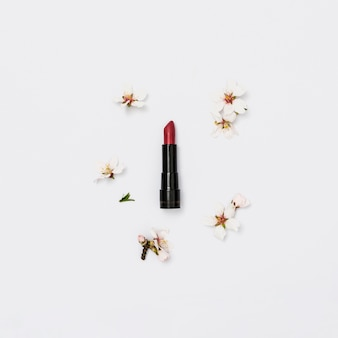Lápiz labial rojo con ramita de flor de primavera sobre fondo blanco