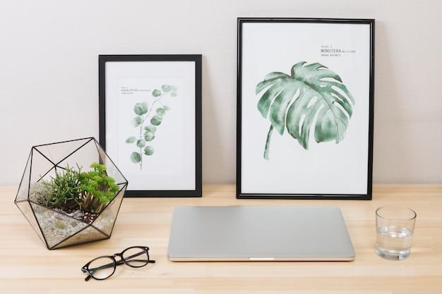Laptop con fotos y planta sobre mesa.