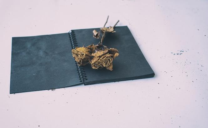 Las rosas secas ponen en el libro negro, tono vintage, estilo de arte abstracto