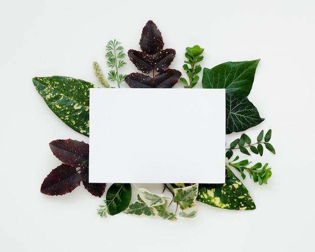 Lay flat de concepto de hojas con espacio de copia