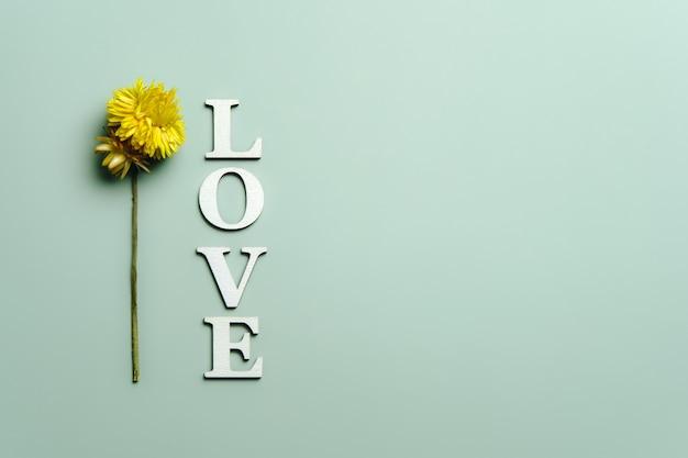 Lay flat creativo de la palabra amor con plantas naturales.
