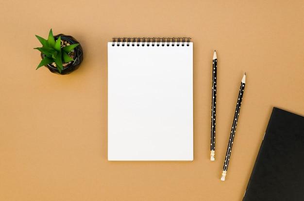 Lay flat de cuaderno en el escritorio con suculentas