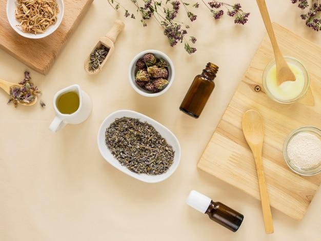 Lay flat de hierbas medicinales y especias.