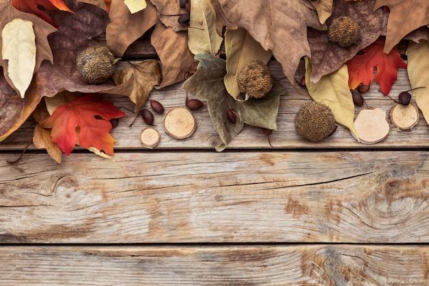 Lay flat de hojas de otoño con espacio de copia