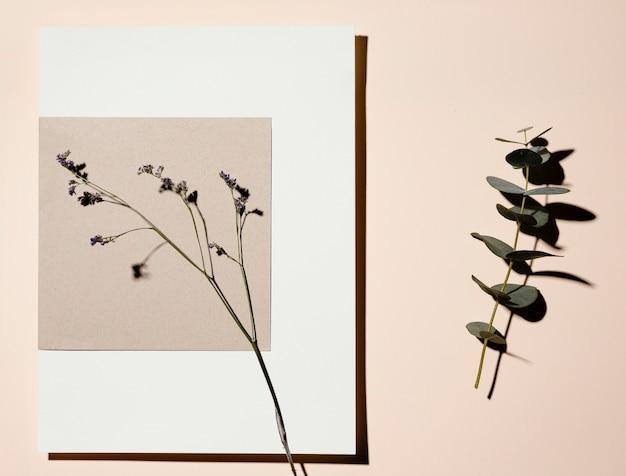 Lay flat de papel de papelería con hojas.