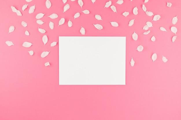 Lay flat de postal blanca con fondo de pétalos