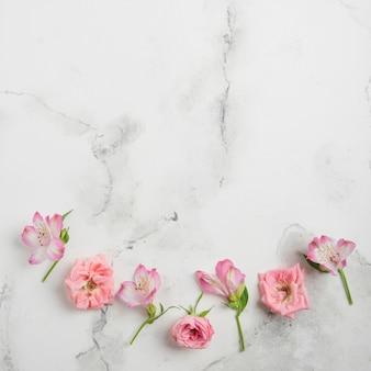 Lay flat de rosas de primavera y orquídeas con fondo de mármol y espacio de copia