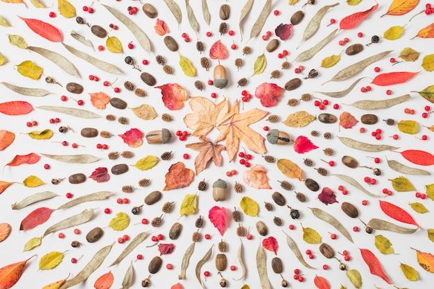 Lay lay hermoso patrón de otoño