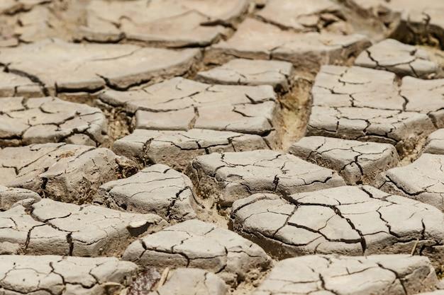 Lecho seco del lago. suelo de sequía. concepto de cambios climáticos y calentamiento global.