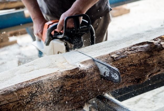 Leñador cortando árboles con motosierra en aserradero. aserradero moderno. industria de aserrar tablas de troncos.