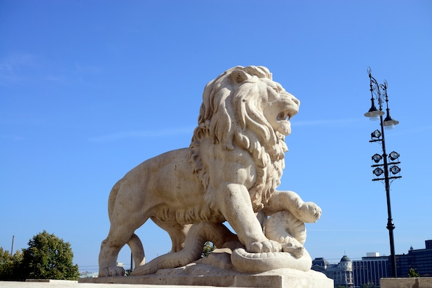 León de budapest