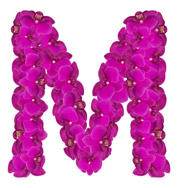 Letra m hecha de pétalos de flores rosas