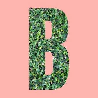 Letras del alfabeto de forma b en estilo hoja verde sobre fondo rosa pastel para el diseño en su trabajo.