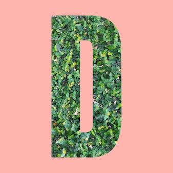 Letras del alfabeto de forma d en estilo hoja verde sobre fondo rosa pastel para el diseño en su trabajo.