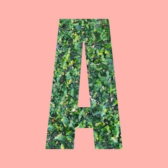 Letras del alfabeto de forma a en estilo hoja verde sobre fondo rosa pastel para el diseño en su trabajo.