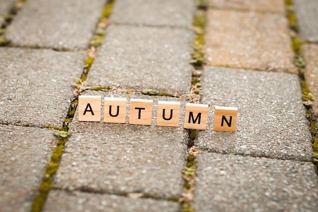 Letras de madera en otoño del callejón.