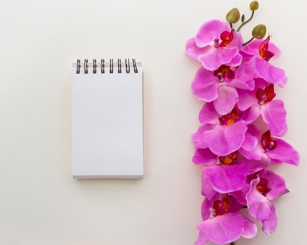La libreta espiral en blanco con la orquídea rosada florece encima aislado en el fondo blanco
