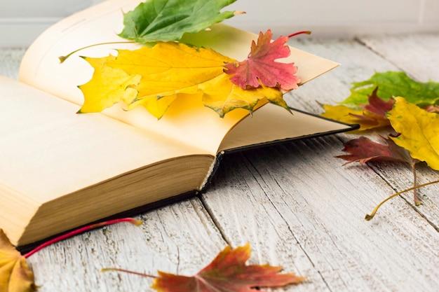 Libro abierto y coloridas hojas de arce sobre fondo blanco de madera