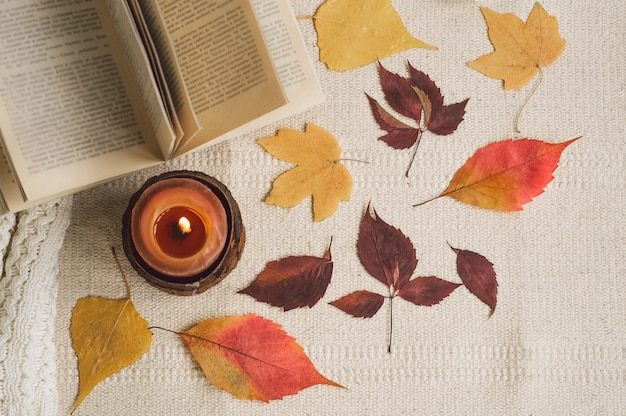 Libro abierto con velas y hojas.