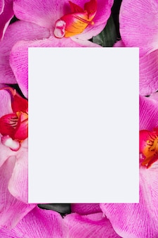 Libro blanco sobre fondo de flores de orquídeas