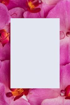 Libro blanco sobre fondo morado de orquídeas