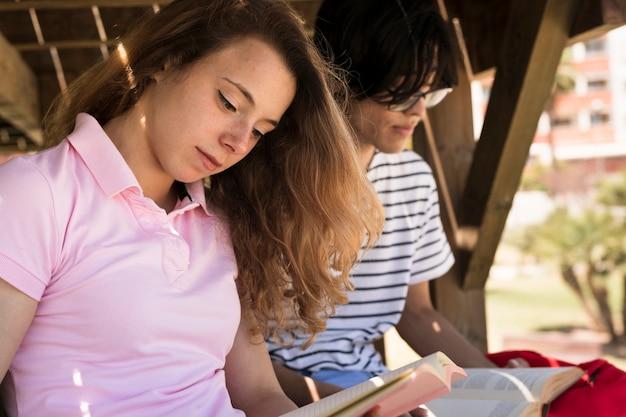 Libro de lectura de estudiantes multirraciales bajo puente de madera