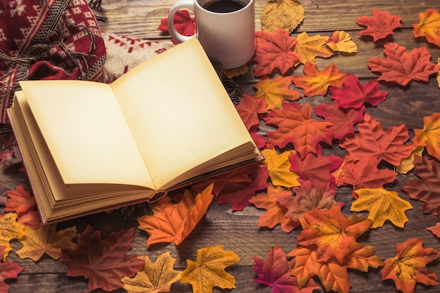 Libro y manta cerca de café en hojas