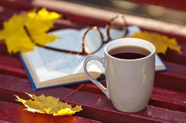 Libro viejo en el banco en el parque otoño