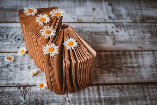 Libros antiguos con flores de margaritas blancas.
