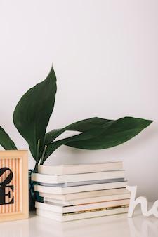 Libros cerca de la planta verde