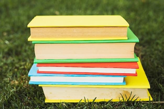 Libros con cubiertas brillantes en blanco sobre hierba