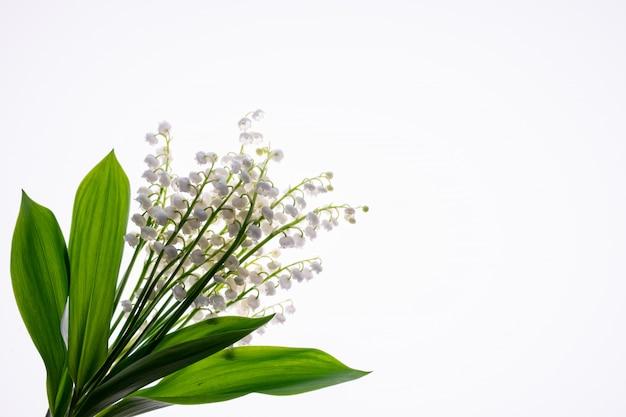 Lilly of the valley flores y hojas bouquet aislado en blanco