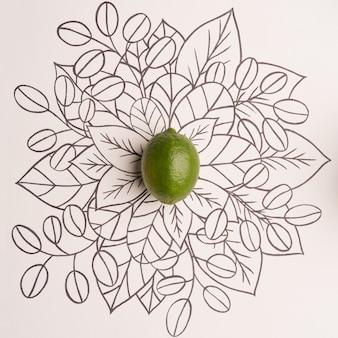 Lima sobre contorno floral dibujado a mano