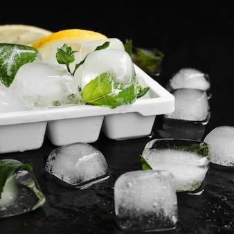 Limones con menta y cubitos de hielo en bandeja.