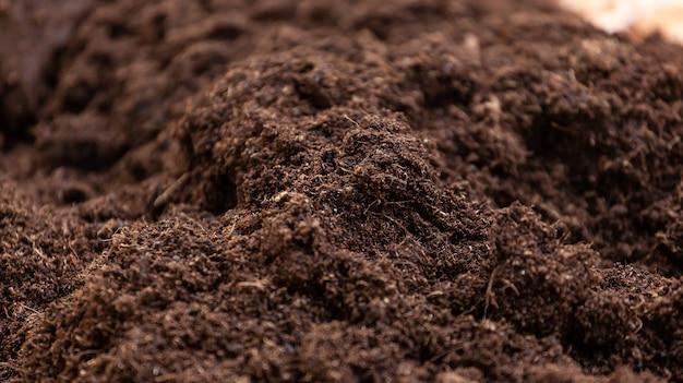 Limpie la tierra para macetas para el cultivo.