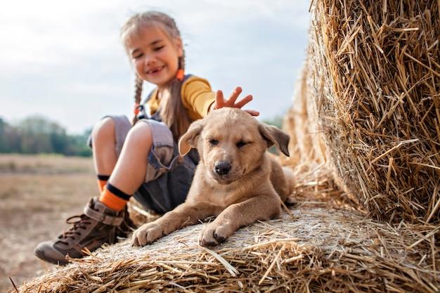 Linda chica jugando con cachorro en rollos de balas de heno en campo