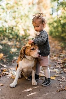Linda niña pequeña jugando con perro beagle