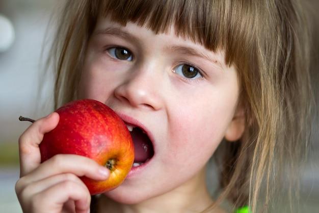 Una linda niña rizada sin dientes sonríe y sostiene una manzana roja. retrato de un bebé feliz comiendo una manzana roja. el niño pierde dientes de leche. nutrición de alimentos saludables.