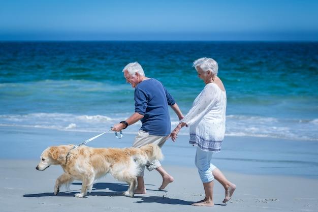 Linda pareja madura cogidos de la mano paseando al perro