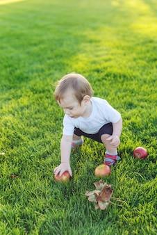 Lindo bebé jugando con manzanas en un césped verde en el parque