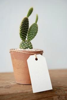 Lindo cactus en maceta de barro con etiqueta de papel en blanco