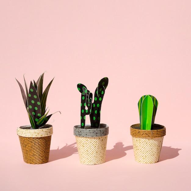 Lindo estilo de corte de papel de cactus artificiales