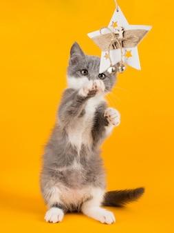 Lindo gatito gris jugando divertido y divertido con un juguete de navidad en un amarillo.