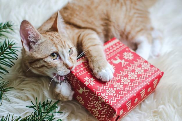 Lindo gatito jengibre acostado en una manta de piel sintética blanca suave con caja de regalo de papel rojo navidad año nuevo vintage