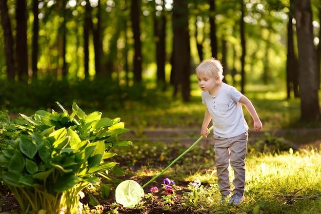 Lindo niño atrapa mariposas con red de cuchara en prado soleado