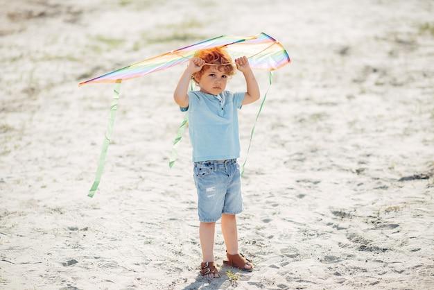 Lindo niño pequeño en un campo de verano con una cometa